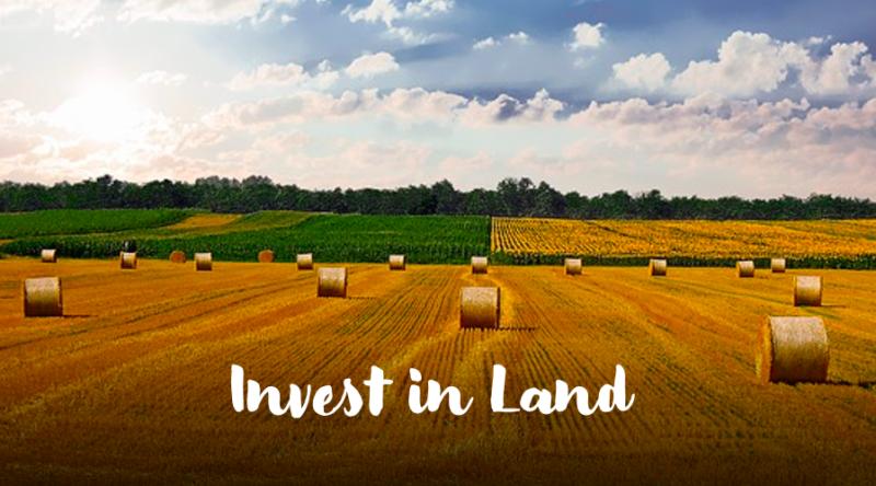 diversify portfolio: invest in land and farmland
